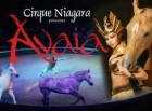 Cirque Niagara's Avaia 2006